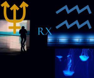 Neptune_RX